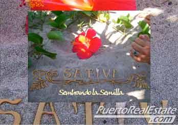 Sativa Restaurant Terraza Bar Playa Zicatela Puerto